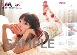 sofmap_250_sample